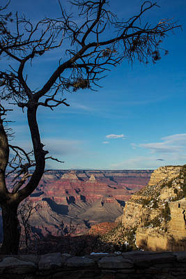 Photograph - Grand Canyon South At Dusk by Kathleen Scanlan
