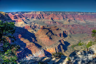 Photograph - Grand Canyon South Rim by Anthony Sacco