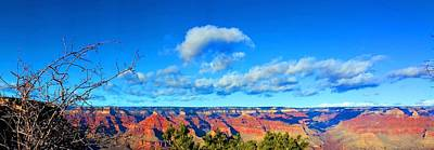 Photograph - Grand Canyon South Rim by Kume Bryant