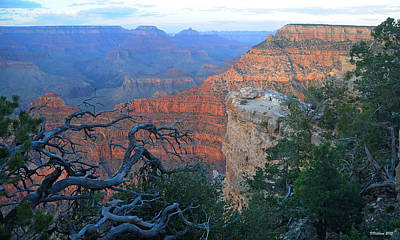 Photograph - Grand Canyon South Rim - Red Hues At Sunset by Victoria Oldham