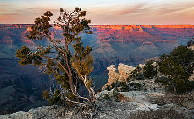 Photograph - Grand Canyon South Rim Sunset by Adam Rainoff