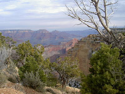 Photograph - Grand Canyon South Rim Vista by Carolyn Jacob