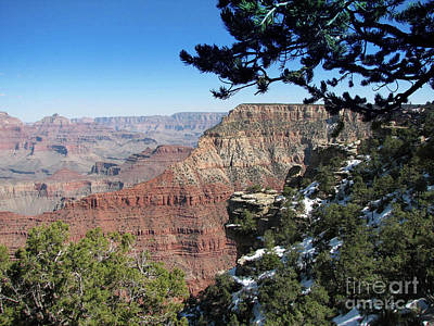 Wall Art - Photograph - Grand Canyon Spring by Tracy Farrand