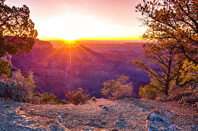 The Grand Canyon Photograph - Grand Canyon Sunrise by Scott McGuire