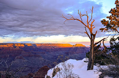 Mauverneen Blevins Photograph - Grand Canyon Sunset by Mauverneen Blevins