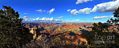 Photograph - Grand Canyon Usa by Eric Liller