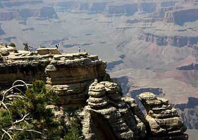 Photograph - Grand Canyon View Point by David Nicholls