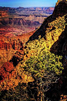 Photograph - Grand Canyon Views No. 11 by Roger Passman