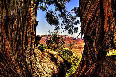 Photograph - Grand Canyon Views No. 14 by Roger Passman