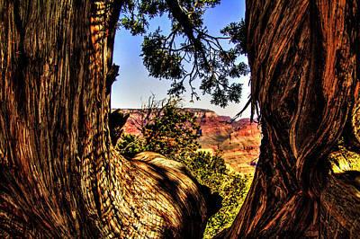 Photograph - Grand Canyon Views No. 14 by Roger Passman