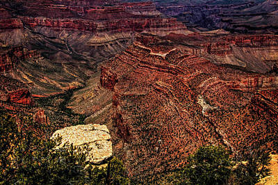 Photograph - Grand Canyon Views No. 8 by Roger Passman