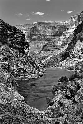 Photograph - Grand Canyon Vista by Alan Toepfer
