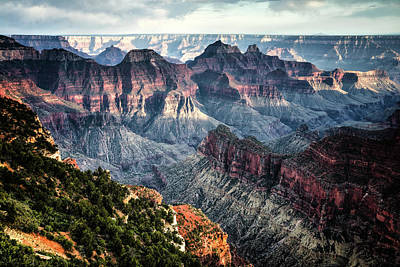Photograph - Grand Canyon by Walt Sterneman