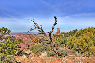 Best Stock Photograph - Grand Canyon Watchtower  by Tod and Cynthia Grubbs