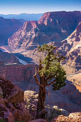 Photograph - Grand Canyon West by Lutz Baar