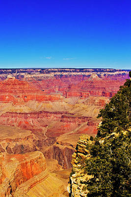 Photograph - Grand Conyon South Rim by Bill Barber