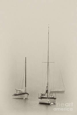 Photograph - Grand Marais - Fs000060-bw by Daniel Dempster