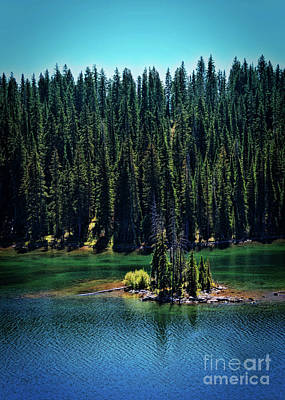 Counry Photograph - Grand Mesa Emerald Isle by Janice Rae Pariza