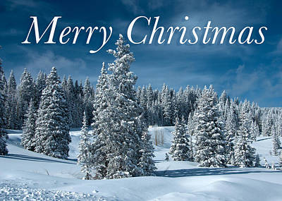 Photograph - Grand Mesa Winter Christmas Card by Roy Kastning