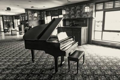Photograph - Grand Piano Bw Series 0953 by Carlos Diaz