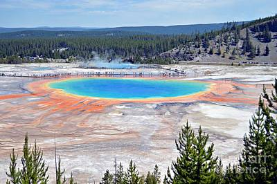 Photograph - Grand Prismatic Spring by Chalet Roome-Rigdon