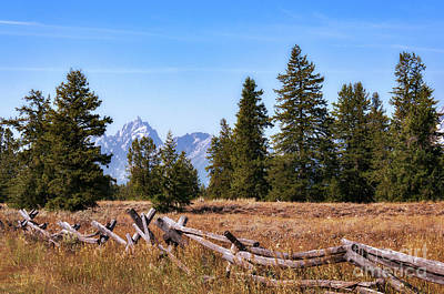 Photograph - Grand Teton And Fence by Sharon Seaward