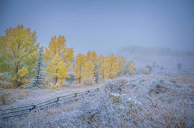 Photograph - Grand Teton Fall Snowfall Scene by Scott McGuire
