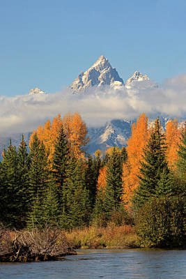 Photograph - Grand Teton by Jack Bell