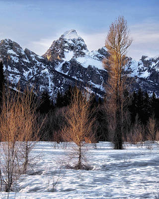 Photograph - Grand Teton by Jim Hill