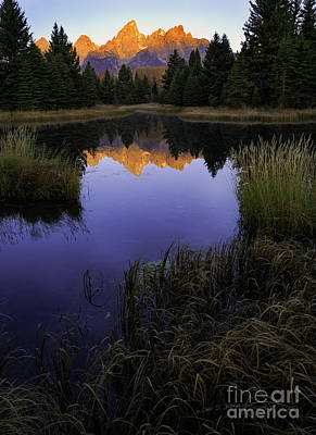 Photograph - Grand Teton Morning by Craig J Satterlee