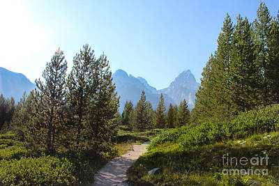 Mountain Range With Evergreens Photograph - Grand Teton Mountains Iv by Kathleen Garman