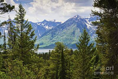 Photograph - Grand Teton Mountains by Tatiana Travelways