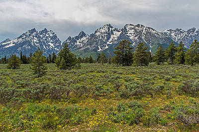 Photograph - Grand Teton National Park Wyoming by Willie Harper