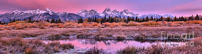 Photograph - Grand Teton Pink Fall Sunrise Panorama by Adam Jewell