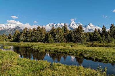 Grand Teton Reflection Art Print by Brian Harig