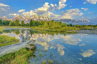 Photograph - Grand Teton Riverside Morning Reflection by Scott McGuire