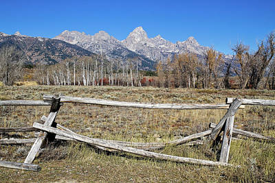 Photograph - Grand Teton View by Shirley Mitchell