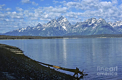 Photograph - Grand Teton Vista by Kevin McCarthy