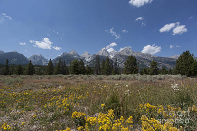 Blue Photograph - Grand Tetons by Carolyn Brown