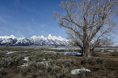 Photograph - Grand Tetons From Gros Ventre by Belinda Greb