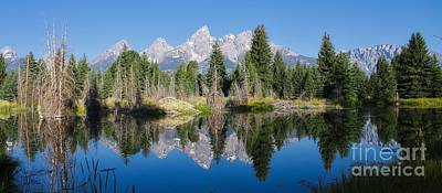 Photograph - Grand Tetons by Phil Cappiali Jr