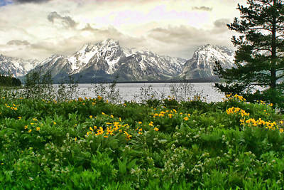 Photograph - Grand Tetons Spring by Shari Jardina