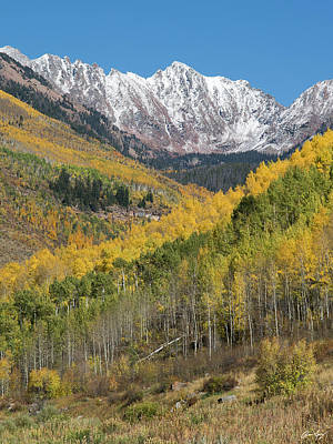 Photograph - Grand Traverse Peak Autumn Vertical by Aaron Spong