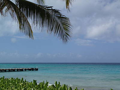 Photograph - Grand Turk by Lois Lepisto