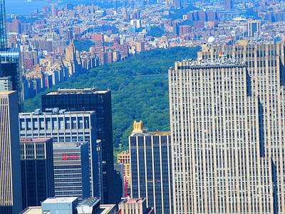 Painting - Grand View Of Central Park At New York Photo By Navinjoshi Fineartamerica by Navin Joshi