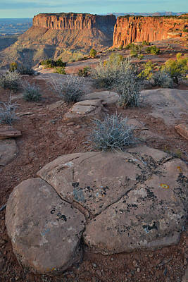 Photograph - Grand View Point And Junction Butte - Canyonlands Np by Ray Mathis