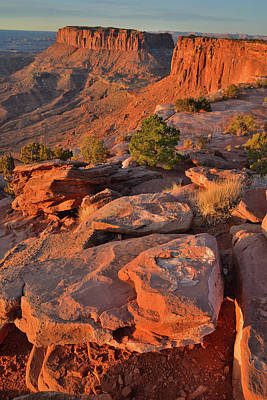 Photograph - Grand View Point Overlook At Sunrise In Canyonlands Np by Ray Mathis