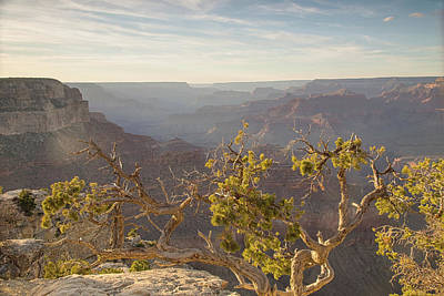 Photograph - Grand Vistas Of The Southwest by Kunal Mehra