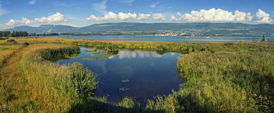 Photograph - Grande Caricaie Natural Wildlife Park, Neuchatel Lake, Switzerla by Elenarts - Elena Duvernay photo