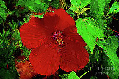 Photograph - Grande Hibiscus 107a by Ray Shrewsberry